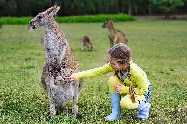 Ausztrál nagy körutazás