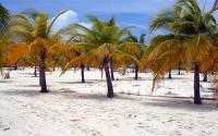 A Karib-tenger varázsa (háromcsillagos szállodákban)