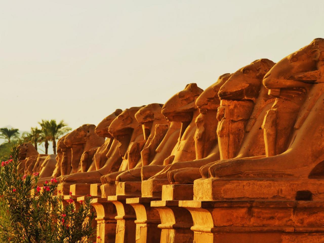 Kleopátra I.-Barceló Pyramids Cairo