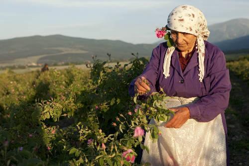 Kolostorok és rózsák földjén Bulgáriában